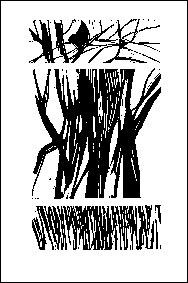 AKSAYAM-Charron