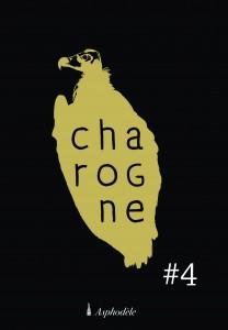 AKSAYAM-charogne