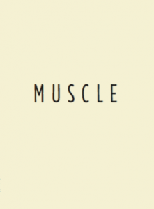 LAURENT-muscle