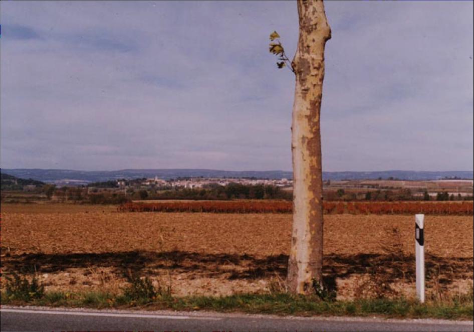 Vue du paysage depuis les abords de la Borio de Blanc, avec Moussoulens au loin.
