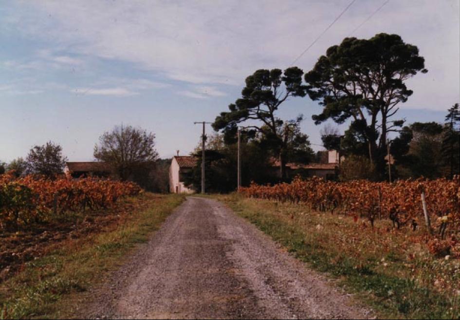 Le chemin menant à la Borio de Blanc.